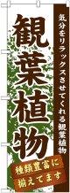 〔G〕 観葉植物 のぼり