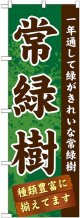〔G〕 常緑樹 のぼり