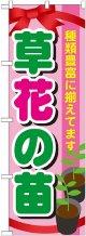〔G〕 草花の苗 のぼり