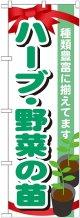 〔G〕 ハーブ・野菜の苗 のぼり