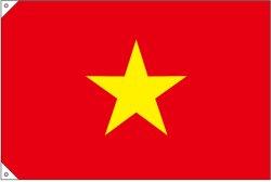 画像2: 世界の国旗 (販促用)  ベトナム (ミニ・小・大)