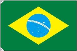 画像3: 世界の国旗 (販促用)  ブラジル (ミニ・小・大)