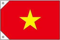 画像1: 世界の国旗 (販促用)  ベトナム (ミニ・小・大)