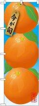 みかん 濃オレンジ 絵旗 のぼり