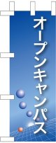 オープンキャンパス(青) ミニのぼり